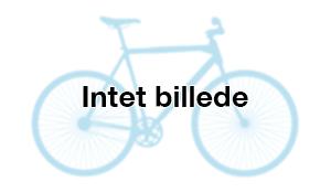 {{bike.title}}
